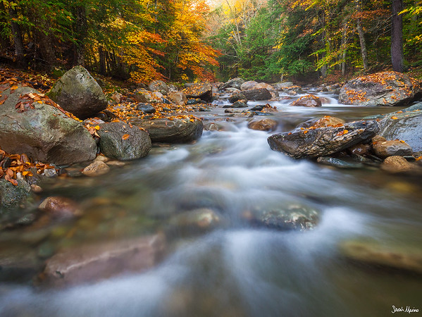Quiet Cascades