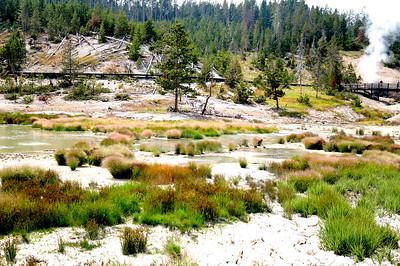 Yellowstone National Park, Mud volcanoes