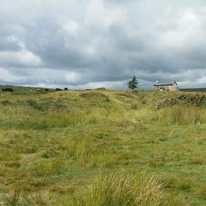Dartmoor 2014