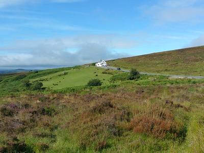Dartmoor August 2015