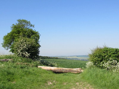 Ridgeway Aldworth May 2012