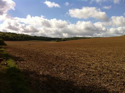 Ridgeway Sept 2011