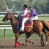 Post Parade, Saratoga Race Course, NY