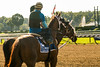 Saratoga 8-16©DonnaLovelyPhotos com-8681