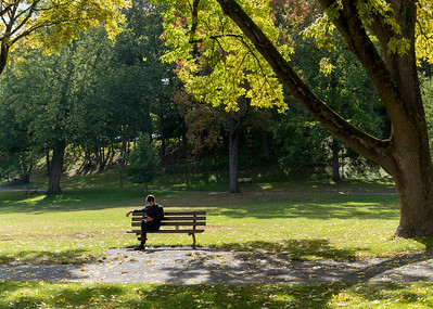 A book, a bench and a park