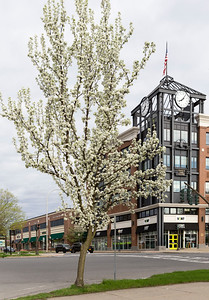 Springtime in downtown Saratoga