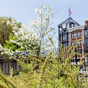 Clock tower in spring