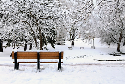 One bench & 3 benches