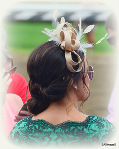 A necessary Saratoga fashion accessory