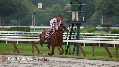 jockeys horses pavilion (3 of 168)