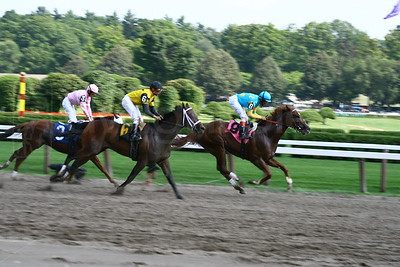 three horses racing bw