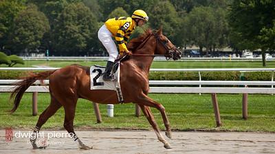 jockeys horses pavilion (45 of 168)
