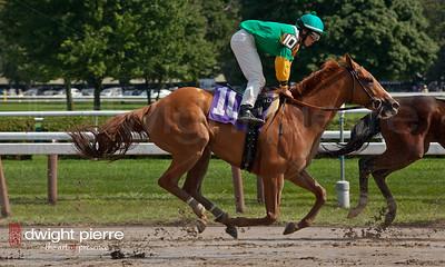 jockeys horses pavilion (88 of 168)