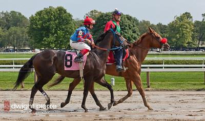jockeys horses pavilion (69 of 168)