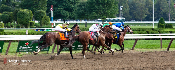 travers stakes final stretch 2012 (49 of 66)