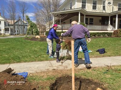 saratoga springs treee planting IMG_9092