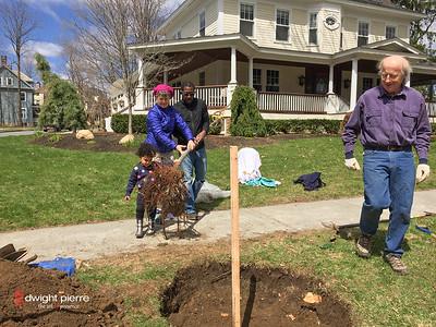 saratoga springs treee planting IMG_9096