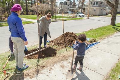 saratoga springs treee planting IMG_5307