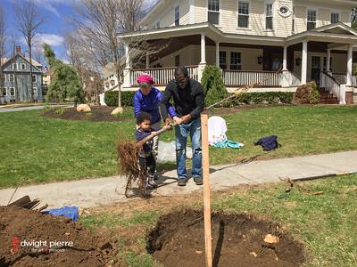 saratoga springs treee planting IMG_9100