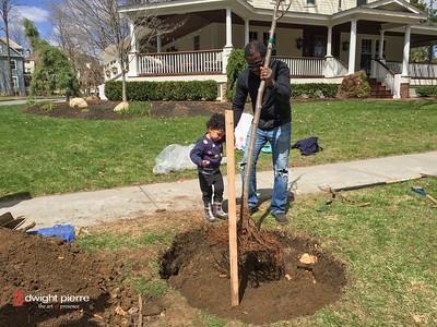 saratoga springs treee planting IMG_9106