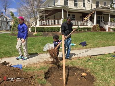 saratoga springs treee planting IMG_9102