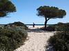 Beach near Budoni, Sardinia<br /> Olympus E-420 & Zuiko 12-60mm/2.8-4.0