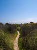 backbeach wetland near Budoni, Sardinia<br /> Olympus E-420 & Zuiko 12-60mm/2.8-4.0
