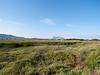 La Cinta wetlands, San Theodoro<br /> <br /> Olympus E-600 & Zuiko 12-60mm/2.8-4.0