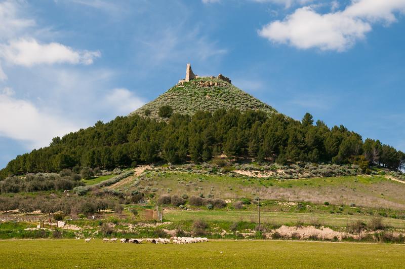 Sardinia, Italy: Las Plassas Castle, situated on Medio Campidano region near Barumini. - Il castello di Marmilla a Las Plassas, nei pressi di Barumini - Medio Campidano.