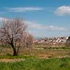 Veduta di Furtei, piccolo paese del Medio Campidano.