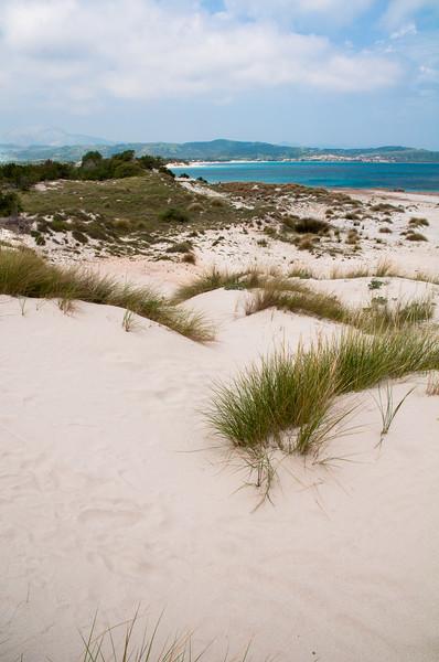 Sardinia, italy: Sand dunes in Capo Comino, near Siniscola