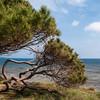 Siniscola: spiaggia de La Caletta