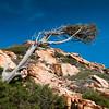 Sardinia, Italy: wild nature in Costa Paradiso