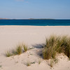 Sardinia, Italy: wild nature at Liscia Ruja beach in Costa Smeralda