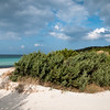 Sardinia, Italy: Costa Smeralda, sand dunes at Pevero beach - Costa Smeralda, dune di sabbia alla spiaggia del Pevero