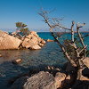 Sardinia, Italy: Costa Smeralda, wild junipers at Capriccioli beach