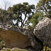 Sardinia: Some granite rocks which are typical in the Gallura region.
