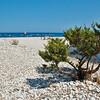 Sardinia, italy: Orosei gulf,  wild nature at Cala Sisine beach. -  Sardegna, Golfo di orosei, natura selvaggia sulla spiaggia di Cala Sisine