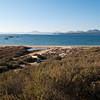 Sardinia, Italy: Olbia, sand dunes in Li Cuncheddi beach, Capo Ceraso. - Sardegna, Olbia: Capo Ceraso, dune di sabbia alla spiaggia de Li Cuncheddi