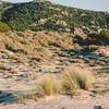 Olbia: Capo Ceraso. Elaborazione pellicola Fuji PRO400H replica.