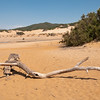 Sardinia, Italy: sand dunes of Piscinas, situated in the Costa Verde region near Arbus - Arbus, Costa verde: spiaggia e dune di Piscinas