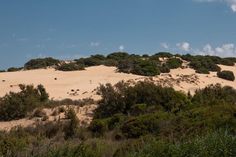 Sardinia, Italy: sand dunes of Piscinas, the widest desertic zone in Europe . (ITA) Arbus, Costa verde: spiaggia e dune di Piscinas, la zona desertica più vasta d'Europa.