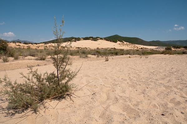 Sardinia: Piscinas