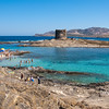 Stintino: Capo Falcone e torre della Pelosa. Sullo Sfondo l'isola dell'Asinara,  sede dell'ex carcere di massima sicurezza.