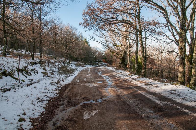 Sardinia, Italy: winter at Spada Mountain, covered by snow. - Sardegna, inverno sul Monte Spada innevato.
