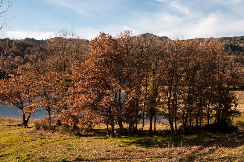 Panorama della riva del Lago di Gusana, nei pressi di Gavoi, in Autunno.