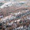 Fonni, neve sul Gennargentu: Bruncu Spina, sede degli unici impianti sciistici presenti in Sardegna