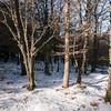 Fonni, neve sul Gennargentu: Monte Spada