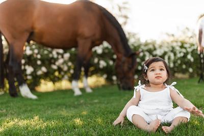 Maharaj Family Session Horse Ranch A023