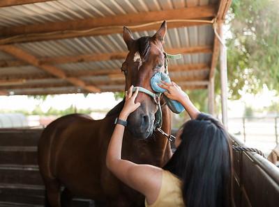 Maharaj Family Session Horse Ranch A001